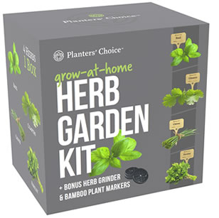 organic herb growing kit