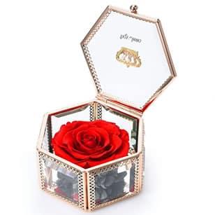 june preserved flower rose