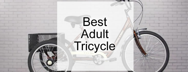 Best Adult Tricycle - Top 5 Revealed (Reviewed February 2019)