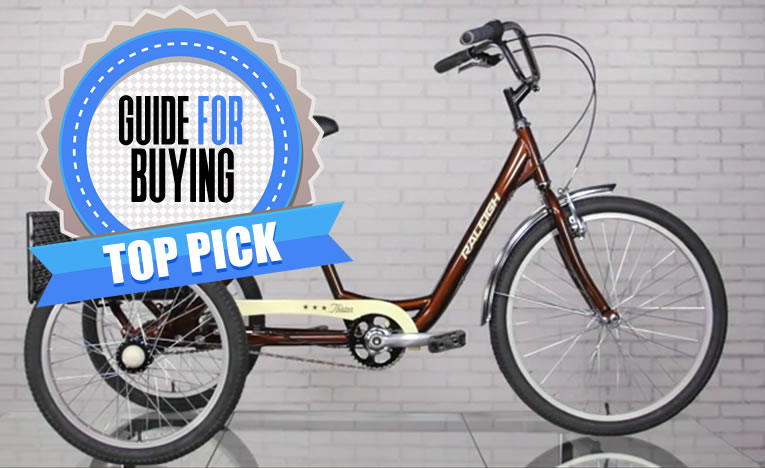 Best Adult Tricycle picks