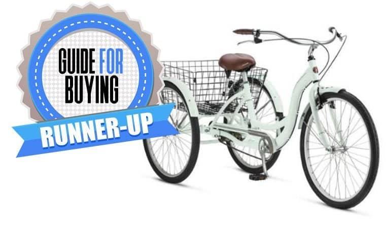 Adult Schwinn Tricycle Beach Cruiser
